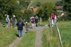 Lindenfels mit Picnic, 2.September 2012