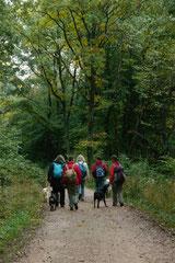 Klosterrunde,T-Dogs,06.10.2013, Foto Nr.3