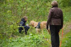 Mantrailing+Wandern Rhön,T-Dogs,30.4.-3.5.2015 Foto Nr.23