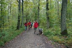 Klosterrunde,T-Dogs,06.10.2013, Foto Nr.1