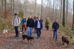 Rhön,Wellness+Wandern,T-Dogs,7.-9.11.2014, Foto Nr.1