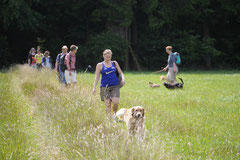 Lindenfels mit Picnic,T-Dogs,15.6.2014,Foto Nr.18