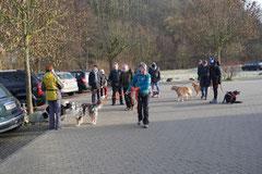 Rod an der Weil, T-Dogs,12.1.14, Foto Nr.1