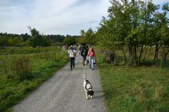 Hundeschulausflug-Sicher auf 4 Pfoten-28.9.13 Foto Nr.8