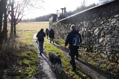 Rod an der Weil, T-Dogs,12.1.14, Foto Nr.15