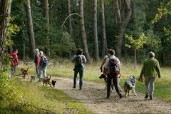 Hundeschulausflug-Sicher auf 4 Pfoten-28.9.13 Foto Nr.7