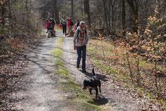 Taunushöhen,T-Dogs,18.4.2015 Foto Nr.15