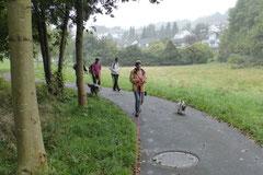 Taunushöhen,T-Dogs, 7.9.2014, Foto Nr.1