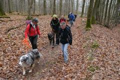 Kapersburg+Winterstein,23.3.14,T-Dogs, Foto Nr.1