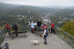 Gimbi,Staufen,Kaisertempel, T-Dogs, 12.10.2014, Foto Nr.17