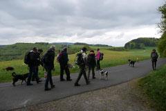 Rhön Frühlingserwachen,T-Dogs,3.+4.5.2014, Foto Nr.5