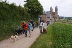 Klosterrunde, T-Dogs,16.5.2015 Foto Nr.13