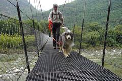 Schweiz-Tessin T-Dogs,Mai 2013, Foto Nr.19