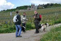 Klosterrunde, T-Dogs, 12.5.13, Foto Nr.11