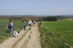 Rheingauen Gebück,T-Dogs,29.+30.3.14, Foto Nr.34