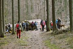 Hundeschulausflug-Sicher auf 4 Pfoten-Herzberg, April 2013, Foto Nr.16