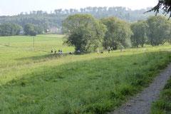 Taunushöhen,T-Dogs, 7.9.2014, Foto Nr.13