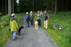 Rund um den Zacken, Trekking-Dogs,30.6.13, Foto Nr.3