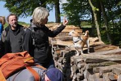 Rhön Frühlingserwachen,T-Dogs,3.+4.5.2014, Foto Nr.20