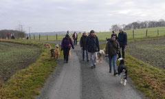 Weiltal, T-Dogs, 7.12.2014, Foto Nr.2
