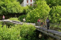 Schweiz-Tessin,T-Dogs,Mai 2014 Foto Nr.32
