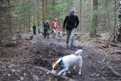 Kapersburg+Winterstein, T-Dogs, 5.10.2014, Foto Nr. 20