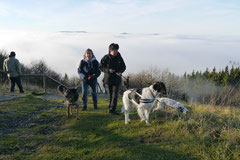 Rhön,Wellness+Wandern,Nov 2013 Foto Nr.:26