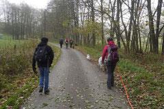 Rhön,Wellness+Wandern,Nov 2013 Foto Nr.:35