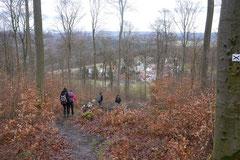 Schmitten zur Landsteiner Mühle,T-Dogs, 11.1.2014,Foto Nr.14