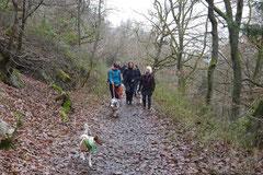 Herzberg und Limes,T-Dogs,6.12.2014, Foto Nr.4
