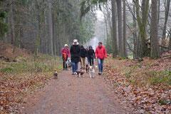 Schnuppertour Bleibeskopf,T-Dogs,14.12.2013, Foto Nr.1