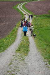 Rhön Frühlingserwachen,T-Dogs,3.+4.5.2014, Foto Nr.15