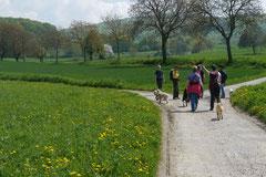 Bensheimer Weinlagen, T-Dogs, 5.5.13, Foto Nr.12