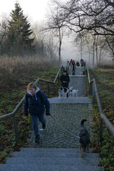 Rhön,Wellness+Wandern,Nov 2013 Foto Nr.:25