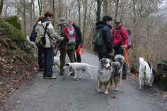 Rund um Lindenfels 5.1.2013 Foto Nr.7