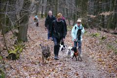 Kapersburg+Winterstein,23.3.14,T-Dogs, Foto Nr.14
