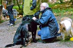 Rund um den Zacken, Trekking-Dogs,30.6.13, Foto Nr.13