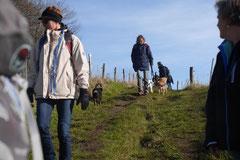 Rhön,Wellness+Wandern,T-Dogs,7.-9.11.2014, Foto Nr.26