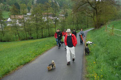 Fischbachtal, T-Dogs 4.5.13, Foto Nr.16