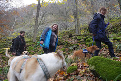 Rhön,Wellness+Wandern,T-Dogs,7.-9.11.2014, Foto Nr.14
