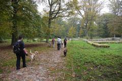 Kapersburg+Winterstein, T-Dogs, 5.10.2014, Foto Nr. 10