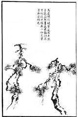 Ma Yuan travaillait quelquefois avec le pinceau peu imbibé d'encre. C'est très beau. [Ses peintures] portent en abondance l'inspiration de l'antiquité. Peindre ainsi est très difficile.