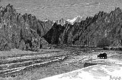 Montagnes de Bourkhan-Bouddha et rivière Nomokhoun-gol