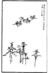 Kouo Hien-hi faisait souvent des forêts de sapin, [avec] de grands et de petits arbres se suivant, contournant les montagnes et descendant dans les vallées. Quand on regarde [ces arbres], ils ne [semblent] pas s'isoler l'un de l'autre.