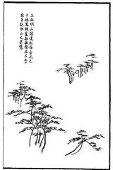 Wang Chou-ming a beaucoup aimé à faire les pins lointains des sommets de montagne. Mille, dix mille arbres et plus, il les entremêlait, innombrables, en guise de tien-t'ai. Cela peut en même temps ajouter à la beauté de la montagne.