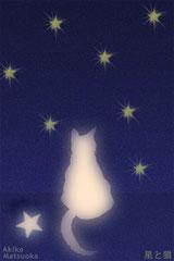 星と猫/松岡晶子/ボールペン,デジタルペイント