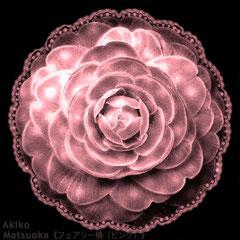 フェアリー椿(ピンク)/松岡晶子digital art(ドロー,ペイント,写真)