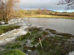 le Serein avec le bief du moulin / der Fluss Serein mit Staudamm zum Mühlengang