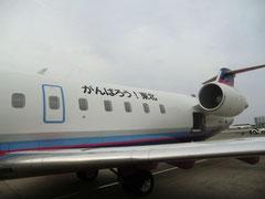 がんばろう!東北 と機体に書かれた飛行機
