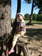 Маруся лазит по корням сосен